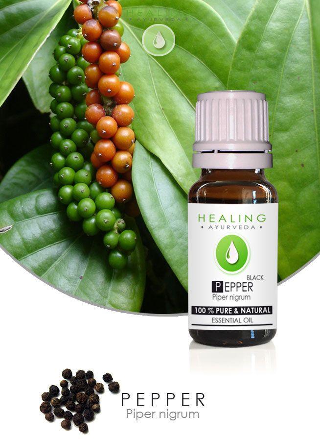 Black pepper oil- Essential oil Pepper- Pure therapeutic essential oil- Piper Nigrum-Healing oil- Ayurveda- chakra oil- Aromatherpy- Massage by FairOrganic on Etsy