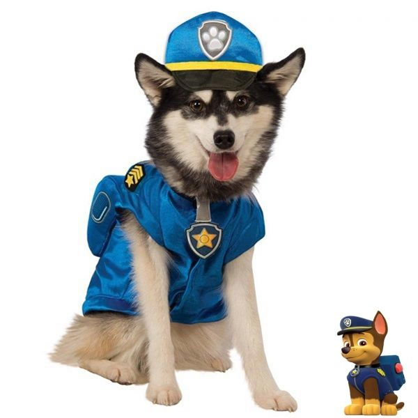 Best 25+ Paw patrol costume ideas on Pinterest