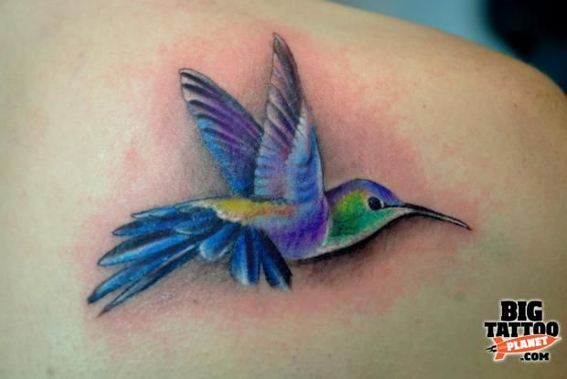 Realistic Hummingbird Tattoos | Twinkle (Alexandra Hugianu) - Colour Tattoo | Big Tattoo Planet