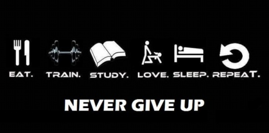 Don't EVER give up!! A good motto!!: Stuff, Don T, Mottos