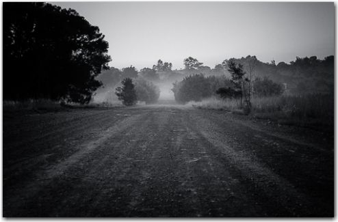Into the fog | Road to nowhere photography collection | George Fivaz Fine Art Photography Gallery