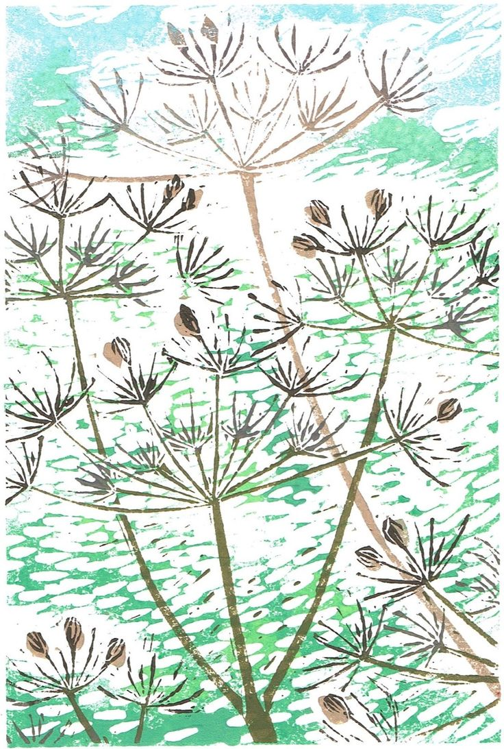 wild plant, British wild plant, Wales, common hogweed, winter, January, February, countryside, meadow, relief print, print, calendar 2017, heracleum sphondylium