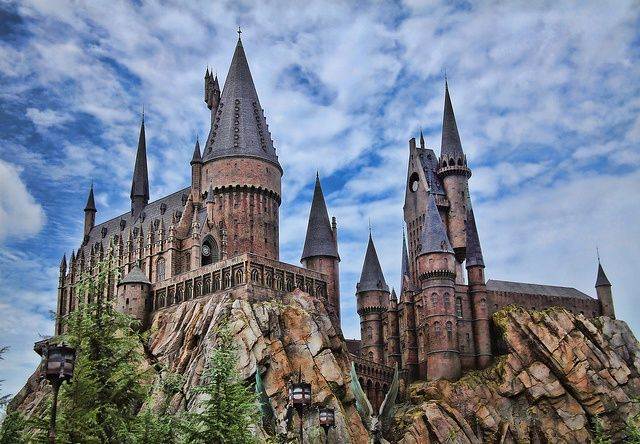 9 best images about family forward  orlando adventure on pinterest