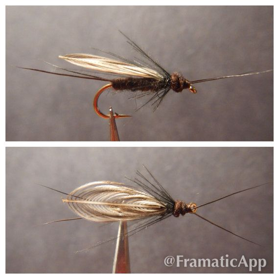 Black Stonefly (6 flies) on Etsy, $15.00 - Prob more for the fisherman then the fish but I like it