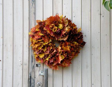 kukka syksyinen - Szukaj w Google