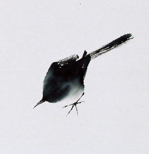birdcagewalk: elemenop:Qin Tianzhu