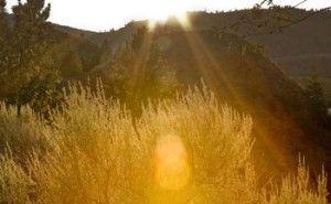 Trails & Parks, Summerland BC