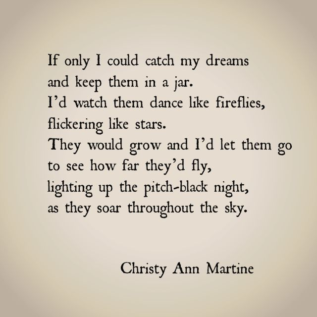 If Only I Could Catch My Dreams by Christy Ann Martine