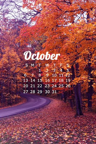 Happy Fall Y'all!> Free October Wallpapers. Be sure to click through to get download instructions for phone and desktop wallpapers!