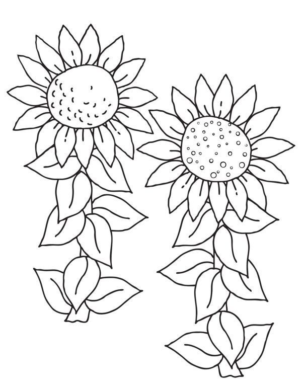 Good Absolutely Free Coloring Pages Sunflowers Strategies Flower Coloring Pages Sunflower Coloring Pages