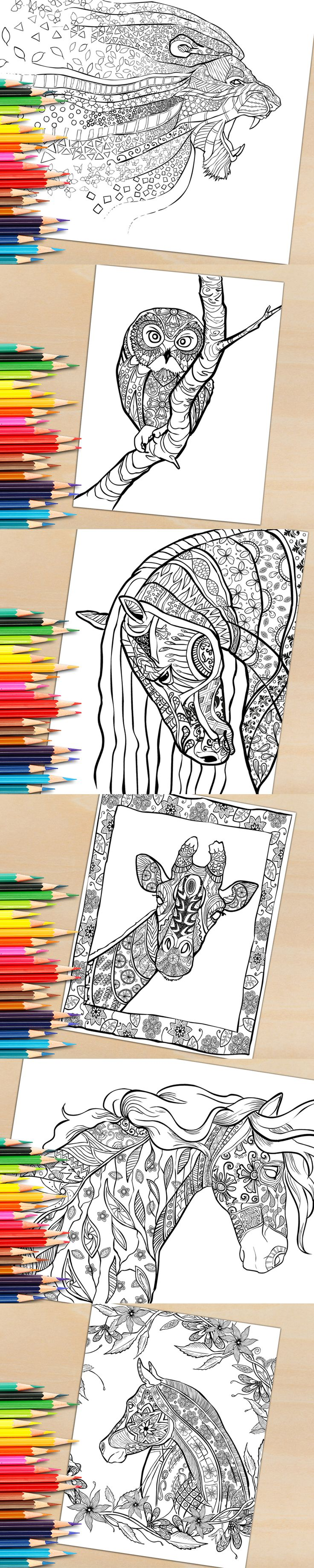Li lion king coloring games online free - What Colors Would You Use To Color These Beautiful Animals How Many Color Schemes Can