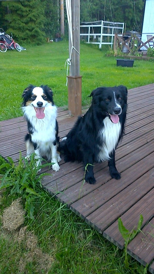 Sisters Rhonda and Zaki