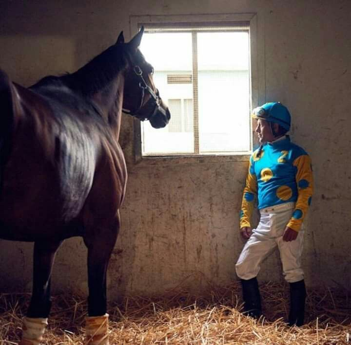 American Pharaoh and Victor having a little talk