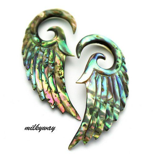 Amazon.com: 6G 4MM ABALONE ANGEL WINGS Ear Gauges Plugs Organic stretcher taper oil slick seraphim (Sold By Pair): Jewelry