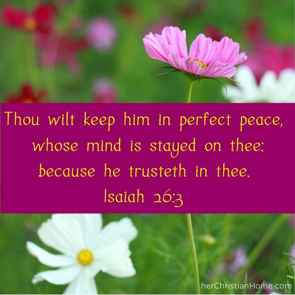"""Thou wilt keep him in perfect peace, whose mind is stayed on thee:  because he trusteth in thee.""  - Isaiah 26:3  #bibleverses"