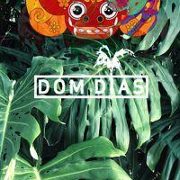 Wiwek - Bollydome (DOM DIAS BOOTLEG) **FREEDOWNLOAD** by DOM DIAS on SoundCloud