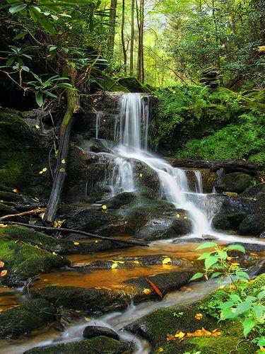 Oakland Run waterfalls, York County
