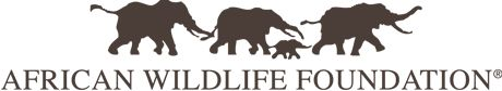 BREAKING: AWF Applauds Passage of a Kenyan Parliament Motion to Increase Penalties for Wildlife Crime