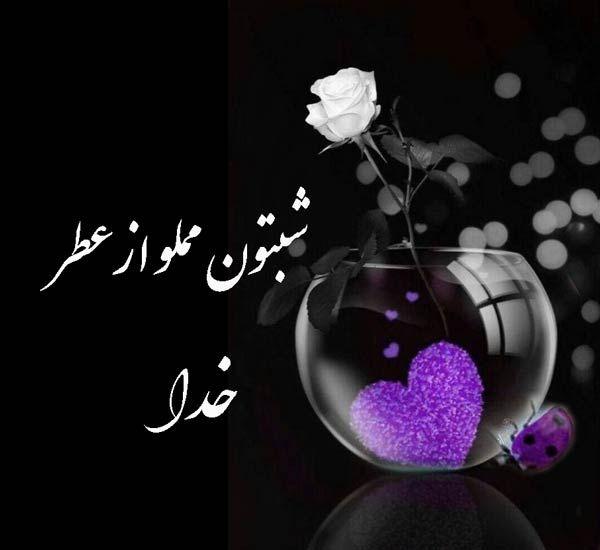 شب بخیر عاشقانه دوستانه و ادبی عکس نوشته شب بخیر مجله تصویر زندگی Good Morning Flowers Quotes Flower Quotes Good Morning Flowers