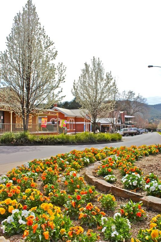 Bright Victoria : Main Street lined with cafes & restaurants : Alpine Valley Getaways