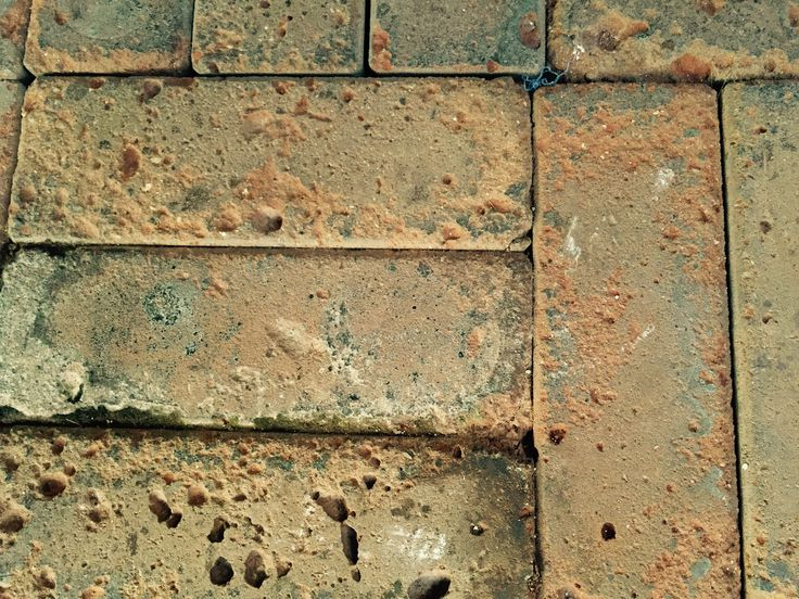 the terrace bricks