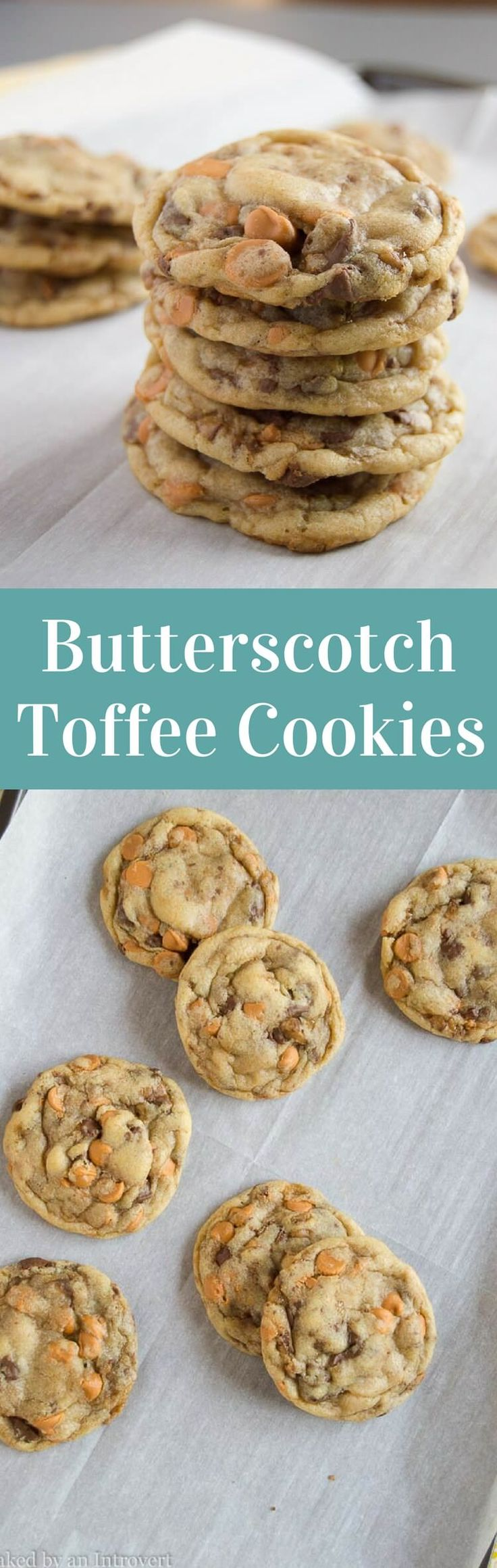 This easy Butterscotch Toffee Cookies recipe may be the best cookies you've ever tasted. They are simple enough to whip up anytime. via @introvertbaker