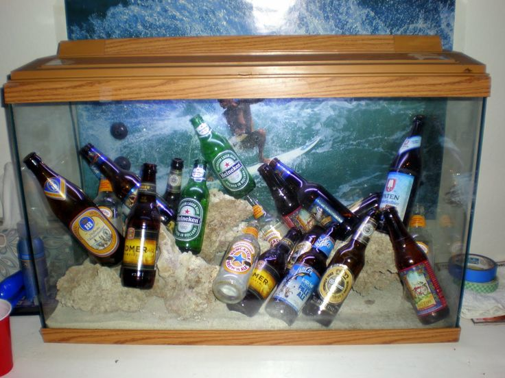 Beer Fish Tanks | AquaticsZone: Funny/Weird/Stupid Looking Fish Tanks