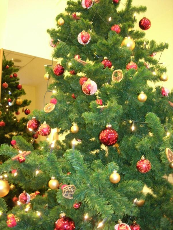 Bald ist es wieder soweit und Weihnachten steht vor der Tür. Ihr sucht noch nach einer passenden Location für Eure Familien- oder Firmenweihnachtsfeier?