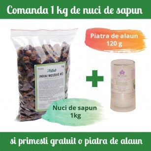 Pachet economic nuci de sapun + piatra de alaun gratis.#nucidesapun #detergentiecologici #piatradealaun #deodorantnatural
