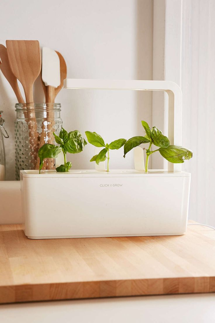 Click Develop Good Herb Back Garden Starter Kit