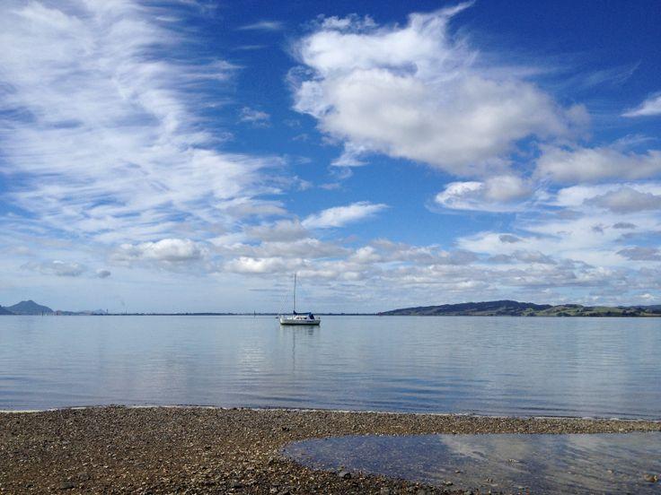 Whangarei harbour