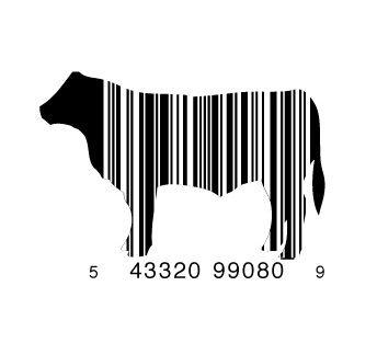 cow bar code #design