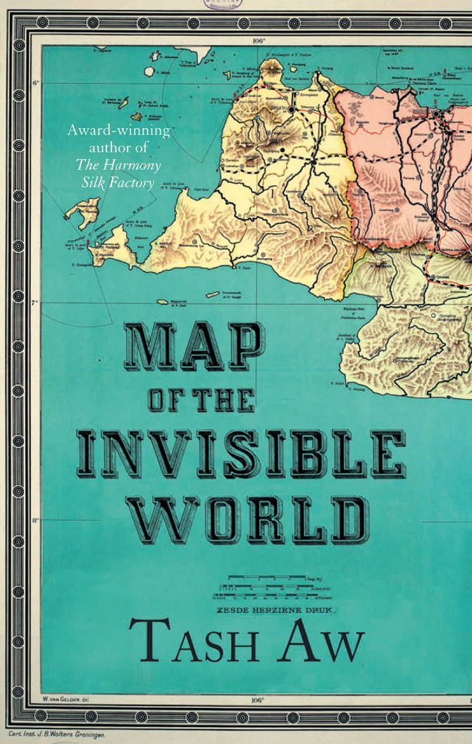 lost in the plot maps on book covers