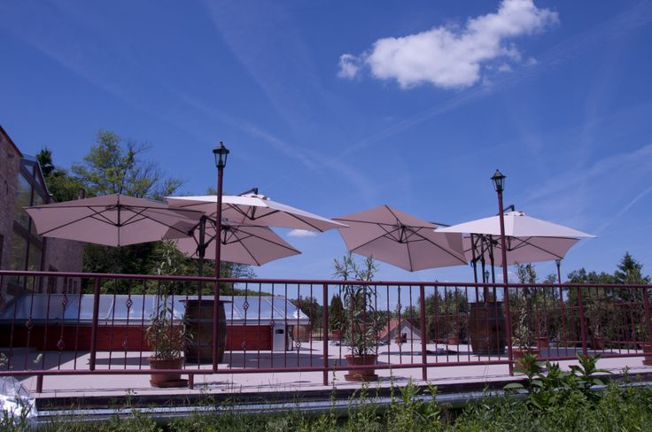 Summertime at Mokos Winery - Nyári hangulat a Mokos Pincészetnél