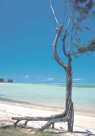 ... Grand Baie : Grand Baie et le Nord : Île Maurice