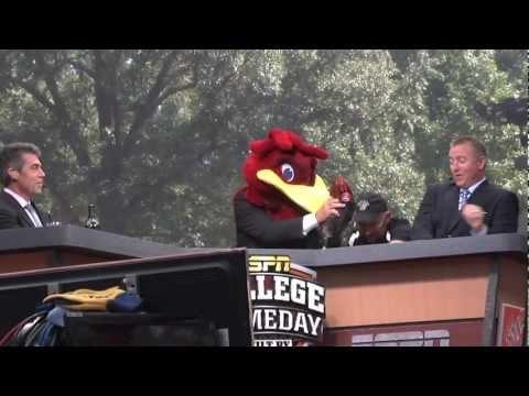 Video of ESPN College GameDay highlights from the Horseshoe at USC today, featuring President Harris Pastides, Darius Rucker, Mark Bryan, Chase Mizzell, David Pollack and Lee Corso. Go Gamecocks!