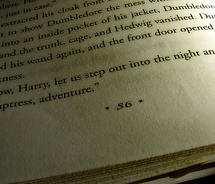 """""""And now, Harry, let us step out into the night and pursue that flighty temptress, adventure."""" Good old Dumbledore.Homenot Really"""
