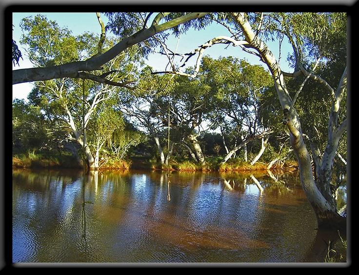 North Pool, Wiluna - Western Australia photo by Ray - www.gdaywa.com