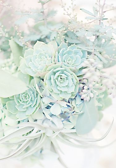 25 Best Ideas About Sea Foam Wedding On Pinterest Seafoam Bathroom Krylon Spray Paint Colors