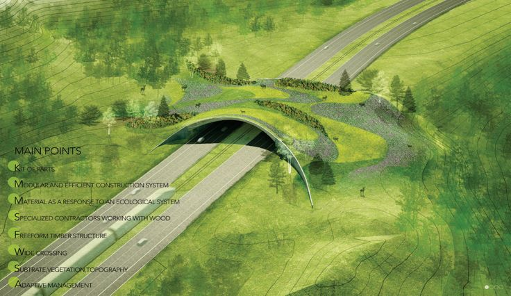 Bustler: Next Generation of Wildlife Crossings Un-Vailed in ARC Competition