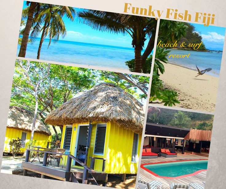 There are some excellent surf breaks located all around Fiji with a range of left and right reef set ups, point breaks and even some rare beach breaks, add to this some spectacular diving spots with a range of different dive types available and you start to picture the perfect HOLIDAY for yourself.