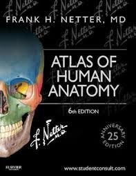 """Atlas of human anatomy : 6th edition"" / Frank H. Netter. Philadelphia : Saunders/Elsevier, cop. 2014. Matèries : Anatomia humana. #nabibbell"