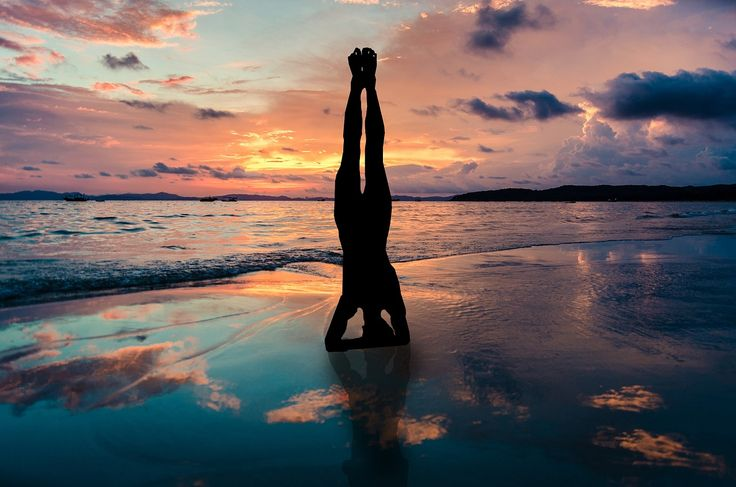 Our own physical body possesses a wisdom which we who inhabit the body lack. We give it orders which make no sense. ~Henry Miller #quote #yoga #breathe #enlightenment #innerpeace #harmony #namaste #meditate #fitness #health #mudra #yogi #positivevibes #goodvibes #powerthoughtsmeditationclub @powerthoughtsmeditationclub