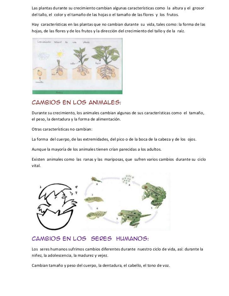 Las plantas durante su crecimiento cambian algunas características como la altura y el grosordel tallo, el color y el tama...