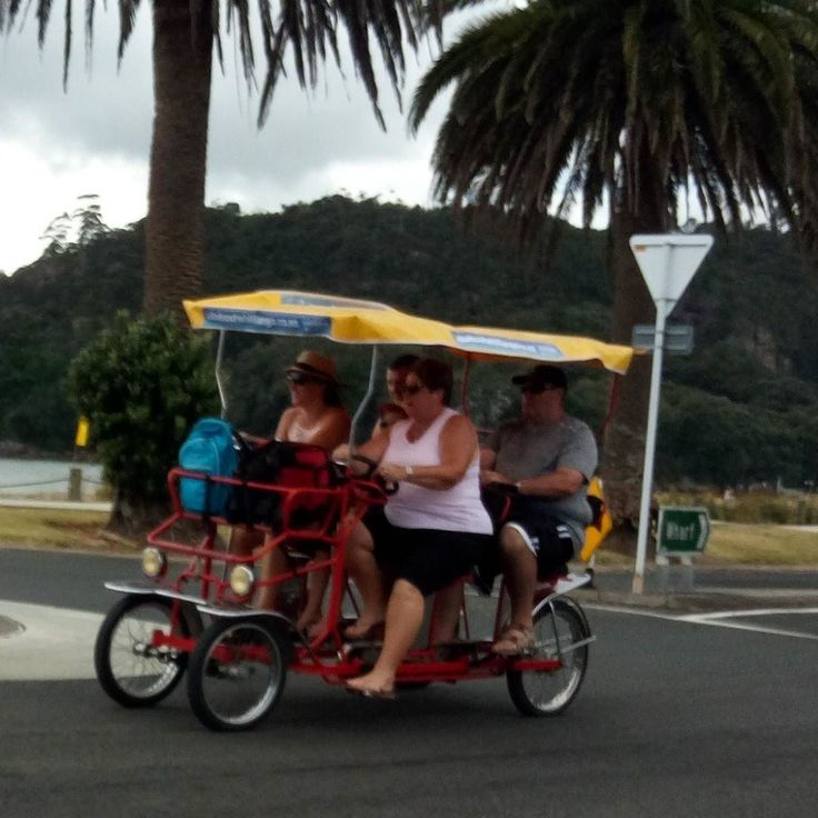 Check out what u can do in #whitianga nz