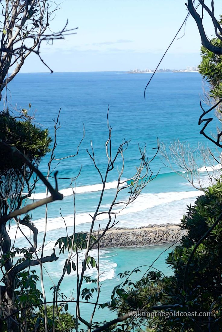 This was taken on the upper trail of #Burleigh Headland National Park. It's not always visible this view, the tree canopy is disappearing due to storms and reveals a new vista to soak in.