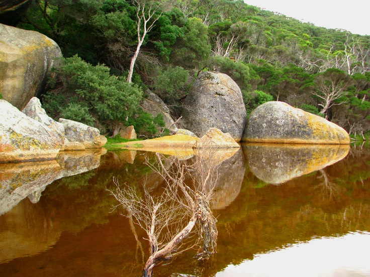 Wilsons Prom - have enjoyed many camping trips, lengthy bushwalks and days out there. A stunning place.