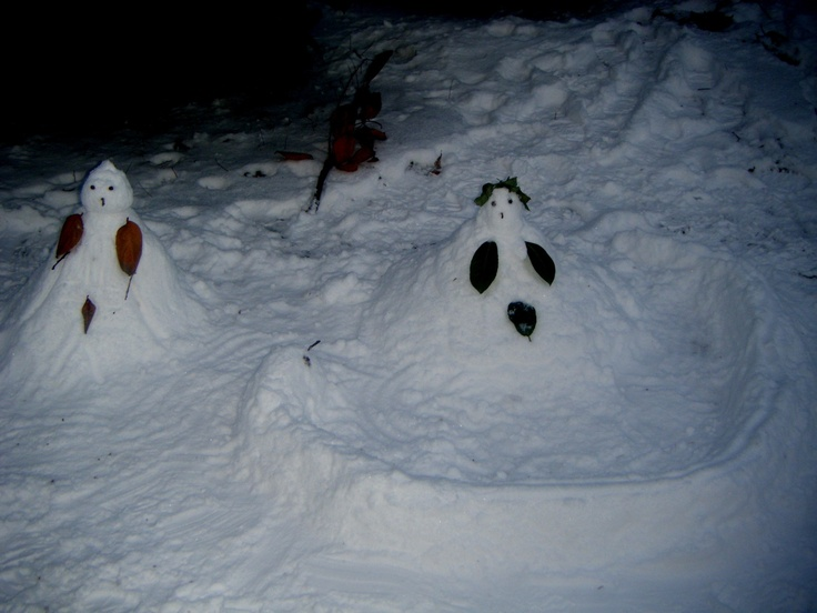 Meanwhile in SnowParadise…  'Owl' Adam & 'Pigeon' Eve are in danger!!!!