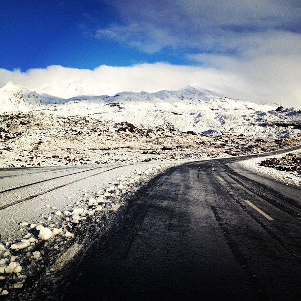 Bruce Road to Whakapapa Ski Field. Start of winter ... 2012