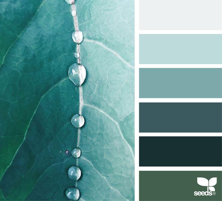 Color palette { color dew } #6